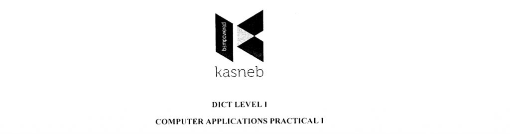computer applications 1 practical notes and past papers